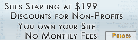 Our prices start at $199 for a brochure site with no monthly fees, and you own your site.